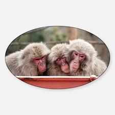 monkey trio Decal