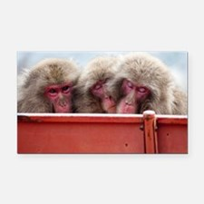 three wise monkeys Rectangle Car Magnet