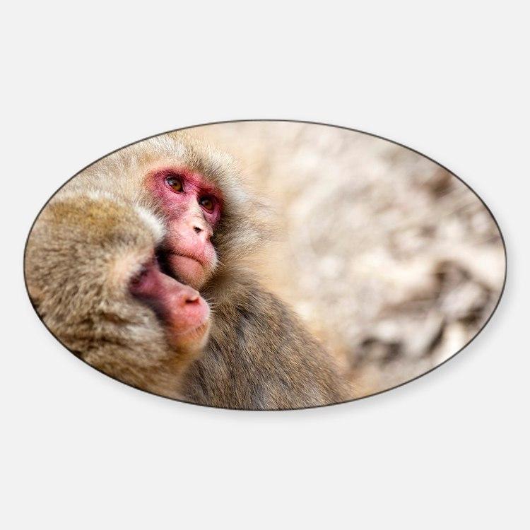two monkeys Decal