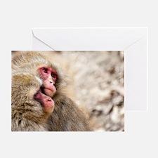 two monkeys Greeting Card
