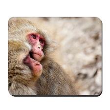 two monkeys Mousepad