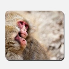 two monkeys Mousepad
