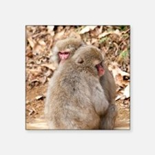 """cuddling monkeys Square Sticker 3"""" x 3"""""""