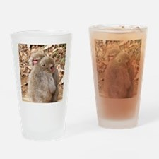 cuddling monkeys Drinking Glass