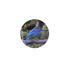 Steller's Jay on Branch Mini Button