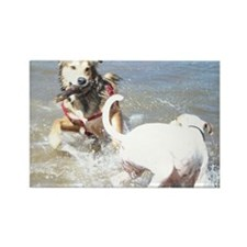 Dogs at Play Rectangle Magnet