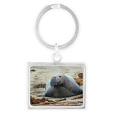 large elephant seal Landscape Keychain