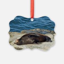 la jolla seals Ornament