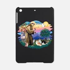 St.Francis #2/ Pomeranian(3) iPad Mini Case