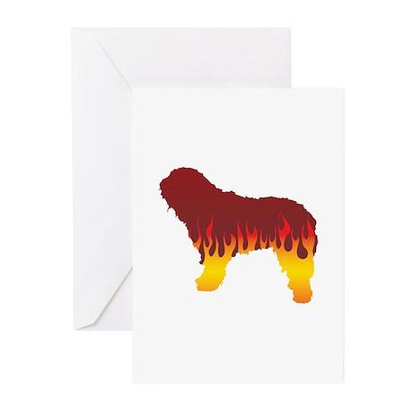 Bergamasco Flames Greeting Cards (Pk of 10)