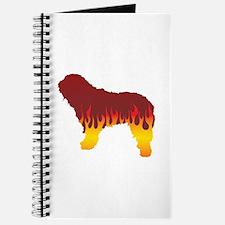 Bergamasco Flames Journal