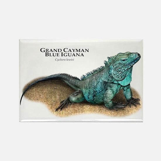 Grand Cayman Blue Iguana Rectangle Magnet