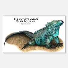 Grand Cayman Blue Iguana Decal