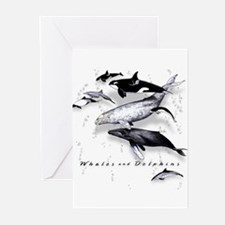 Funny Orca Greeting Cards (Pk of 10)