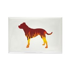 Dogo Flames Rectangle Magnet (100 pack)