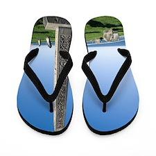 Caedmon's Cross in Whitby Flip Flops