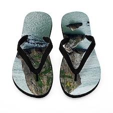 Three Rocks Flip Flops