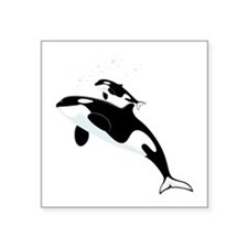 Killer Orca Whales Sticker