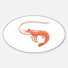 Prawn Shrimp Decal
