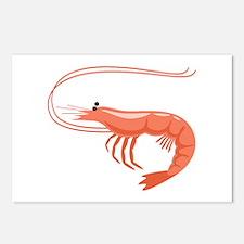 Prawn Shrimp Postcards (Package of 8)