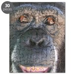 April - Save the Chimps Puzzle