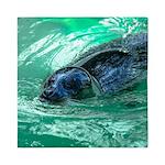 Swimming Seal Queen Duvet