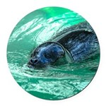 Swimming Seal Round Car Magnet