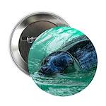 Swimming Seal 2.25