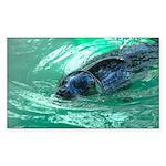 Swimming Seal Sticker