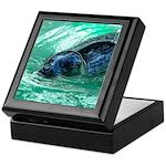 Swimming Seal Keepsake Box