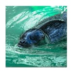 Swimming Seal Tile Coaster