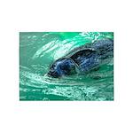 Swimming Seal 5'x7'Area Rug