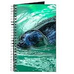Swimming Seal Journal