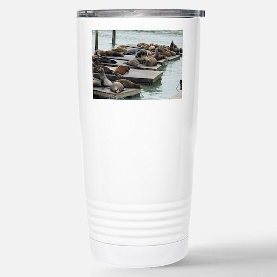 seals at fishermans wha Stainless Steel Travel Mug