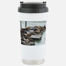 seals at fishermans wha Travel Mug