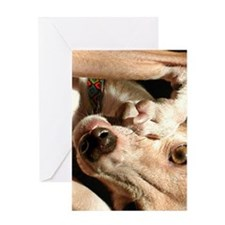 smunch Greeting Cards