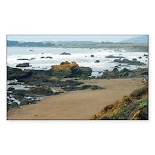 Central Coast Rocks Decal