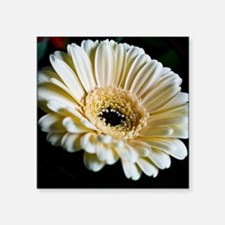 "Gerbera Flower Square Sticker 3"" x 3"""