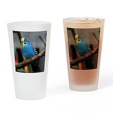 Budgie Flower Drinking Glass