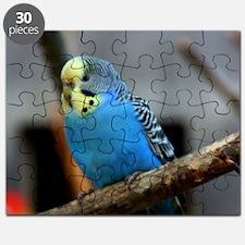 Budgie Flower Puzzle