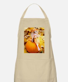 Pumpkin Fairy Apron