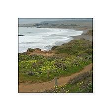 """Central Coast Beach Square Sticker 3"""" x 3"""""""