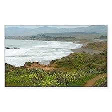 Central Coast Beaches Decal