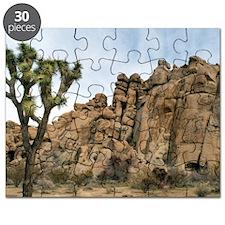 Joshua Tree Landscape Puzzle