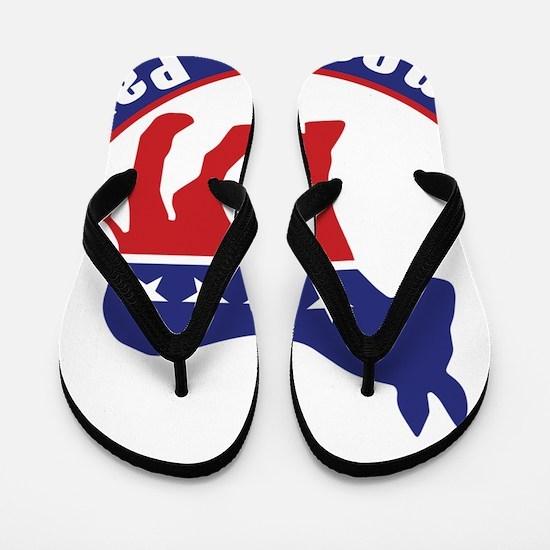 Illinois Democratic Party Original Flip Flops