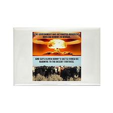 Raid On Bundy Ranch Magnets