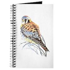 Watercolor Kestrel Falcon Bird Art Journal