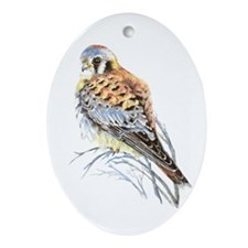 Watercolor Kestrel Falcon Bird Art Ornament (oval)
