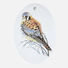 Watercolor Kestrel Falcon Bird Art Ornament (oval)