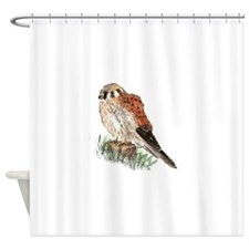 Watercolor Kestrel Falcon Bird Nature Art Shower C